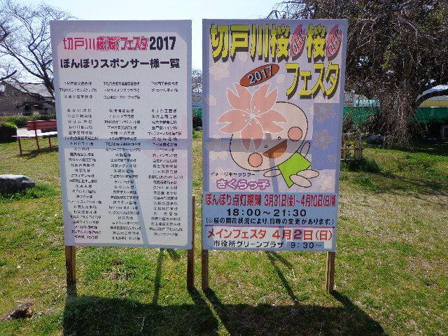 下松市「切戸川桜!桜!フェスタ2017」開催