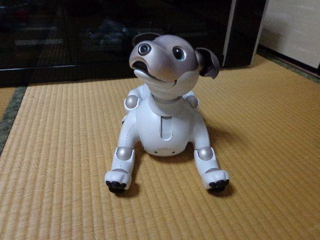 ロボット犬「アイボaibo」が我が家にやってきた